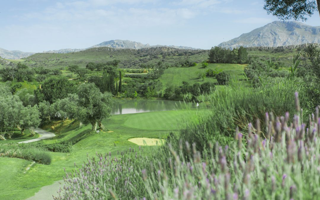 Ecological golf course in Malaga