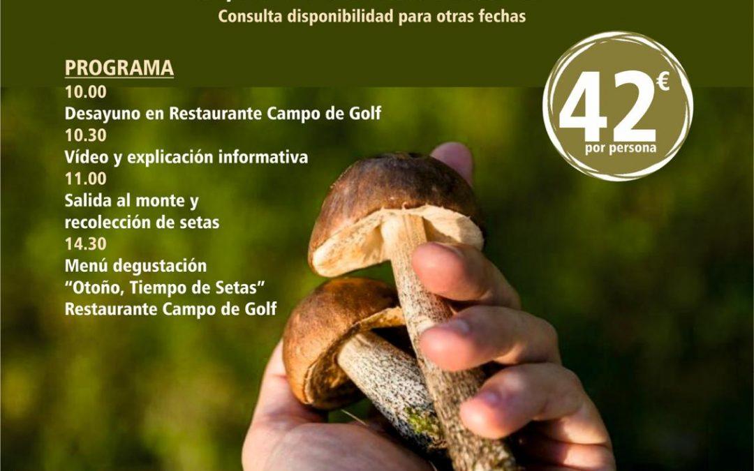 Jornadas micológicas con Antequera Golf y Sendero Sur Aventura